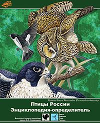 Птицы России. Энциклопедия-определитель